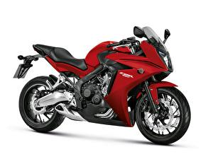 Honda_Motorcycles_2014-16_CBR650F_White_background_521645_300x225.jpg